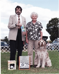 Open A First Place at Lehigh Valley Kennel Club Trial